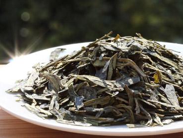 Grüner Tee und Kombucha. Welcher Tee ist der Richtige zur Herstellung von Kombucha? Diese Frage beantworten wir Ihnen hier - erfahren Sie welche Teesorte sich am besten für Ihren Kombuchapilz (Teepilz, Tibi) eignet, wie einfach die Herstellung ist sowie wie die Wirkung des Tee auf Kombucha ist. Egal ob Schwarzer Tee, Grüner Tee, Mate-Tee, Gelber Tee, Darjeeling, Weißer Tee oder Pu-Erh-Tee - wir liefern Ihnen alle Informationen, die Sie im Umgang der Teesorten und Kombucha brauchen.