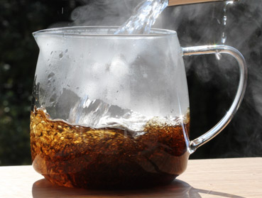 Ostfriesenblatt I und Kombucha. Welcher Tee ist der Richtige zur Herstellung von Kombucha? Diese Frage beantworten wir Ihnen hier - erfahren Sie welche Teesorte sich am besten für Ihren Kombuchapilz (Teepilz, Tibi) eignet, wie einfach die Herstellung ist sowie wie die Wirkung des Tee auf Kombucha ist. Egal ob Schwarzer Tee, Grüner Tee, Mate-Tee, Gelber Tee, Darjeeling, Weißer Tee oder Pu-Erh-Tee - wir liefern Ihnen alle Informationen, die Sie im Umgang der Teesorten und Kombucha brauchen.