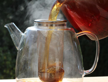 Welcher Tee ist der Richtige zur Herstellung von Kombucha? Diese Frage beantworten wir Ihnen hier - erfahren Sie welche Teesorte sich am besten für Ihren Kombuchapilz (Teepilz, Tibi) eignet, wie einfach die Herstellung ist sowie wie die Wirkung des Tee auf Kombucha ist. Egal ob Schwarzer Tee, Grüner Tee, Mate-Tee, Gelber Tee, Darjeeling, Weißer Tee oder Pu-Erh-Tee - wir liefern Ihnen alle Informationen, die Sie im Umgang der Teesorten und Kombucha brauchen.